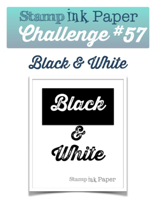 Check out my take on this challenge including a video tutorial on my blog: www.thecreativitycave.com #stampinup #sipchallenge #thecreativitycave