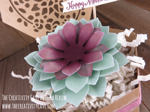 Check out all the details on this beautiful box and matching card set on my blog using Stampin Up's Oh SO Succulent bundle and Window Box Thinlits at www.thecreativitycave.com #stampinup #thecreativitycave #ohsosucculent #windowboxthinlits