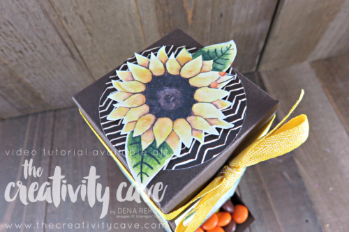Chocolate Dispenser: Check out the video tutorial showing you step by step how to create this adorable box! www.thecreativitycave.com #stampinup #thecreativitycave #handmade #box #tutorial #videotutorial #paintedharvest #paintedautumndsp #chocolatedispenser