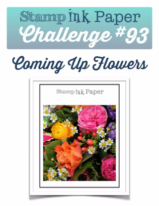 Check out the Video Tutorial for my take on this fun challenge from SIP Challenge at www.thecreativitycave.com #stampinup #birthdayblooms #flowers