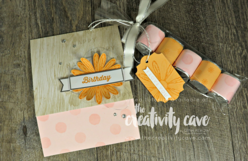 Chek out the alternative projects I created for this month's Paper Pumpkin Kit and don't forget when you subscribe through The Creativity Cave, you'll receive FREE bonus tutorials on alternative projects using your kit contents!  www.thecreativitycave.com #stampinup #thecreativitycave #paperpumpkin #subscriptioncraftbox #cardmaking #create #quickandeasy