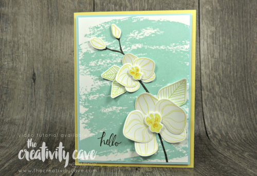 Check out my video tutorial for a fun an easy card made with Stampin Up's Climbing Orchid Stamp Set on my blog at www.thecreativitycave.com #stampinup #watercolorwashbackground #climbingorchid #stampinup #bigshot #pretty #orchids