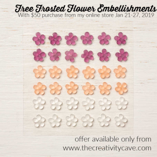 Frosted Flower Embellishments are a gift for anyone who places at least a $50 order from my online store this week ONLY at www.thecreativitycave.com