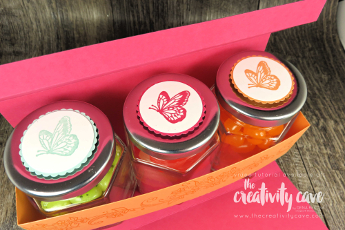 Check out the video tutorial showing how easy it is to create this adorable bottle box filled with yummy treats in sweet little bottles in side on my blog at www.thecreativitycave.com #stampinup #thecreativitycave #treatholder #beautyaboundsstampset #incrediblelikeyoustampset #videotutorial