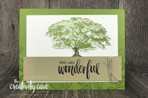 Check out the newest installment in the Simple to Stunning series featuring masculine cards created with Stampin Up's Rooted in Nature Stamp Set on my blog at www.thecreativitycave.com #simpletostunning #handmade #videotutorial #learntostamp #rootedinnature