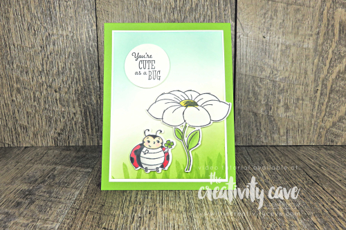 Fabulous Step by Step video tutorial for this ADORABLE card featuring Stampin Up's Little Ladybug Stamp set and coordinating Ladybug Dies on my blog at www.thecreativitycave.com #popandtwist #cardsthatdostuff #interactivecards #littleladybugstampset #littleladybug #handmade #adorable #create #stampinblends #alcoholmarkers #sponging #videotutorial